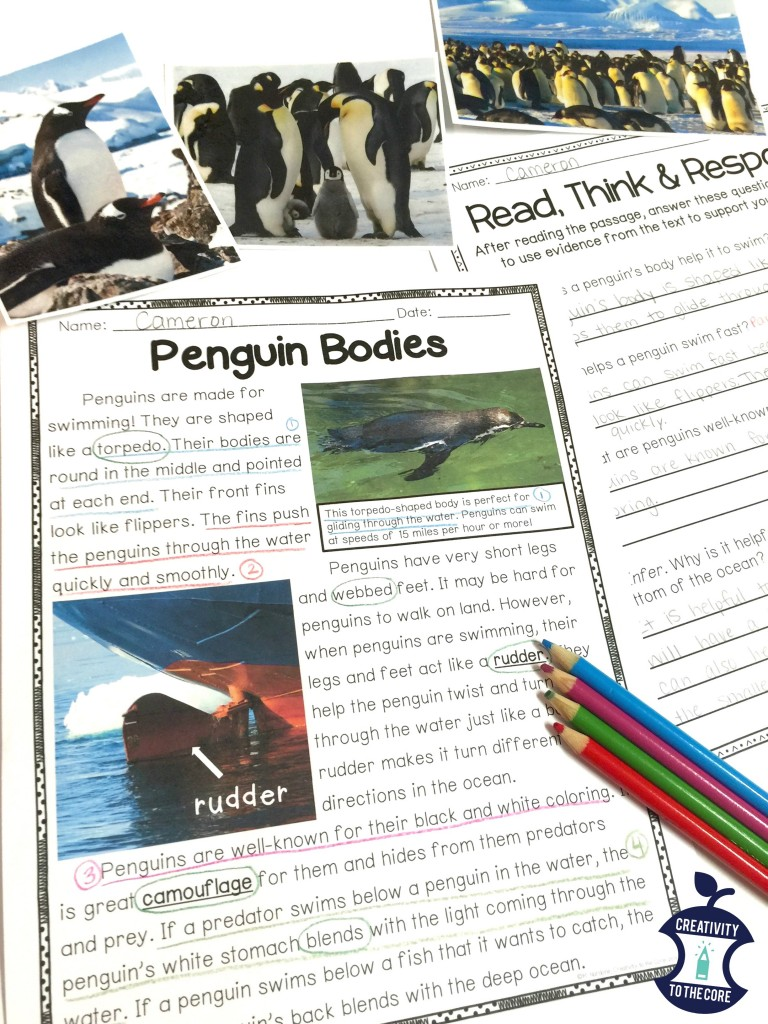 Penguin close reads - Freebie!