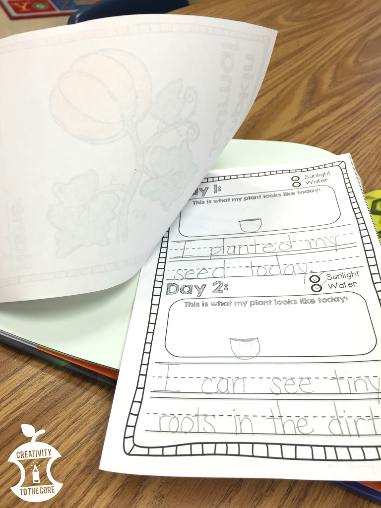 Little Boo Lesson Plan Ideas for a pumpkin life cycles unit